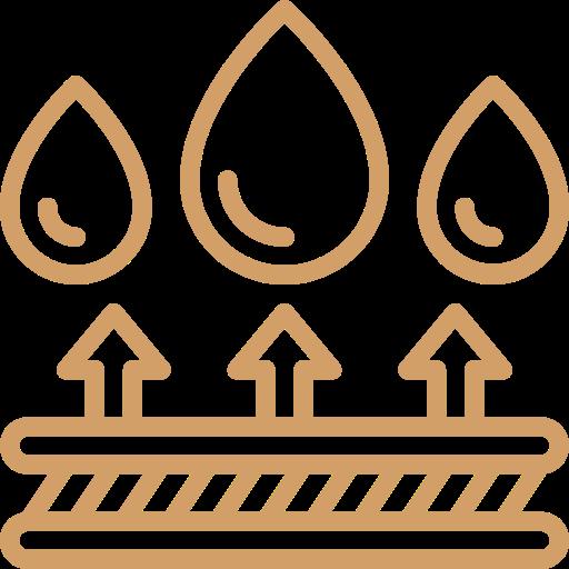 Icon Wasserfest