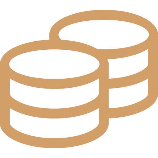 Icon Münzen